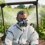Semimasca protectie impotriva prafului, gazelor si vaporilor   Elipse A1P3   GVS